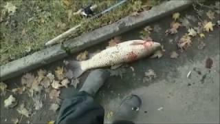 Наша рыбалка канал сомкнут что это
