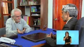 Kipatla (LSM) - Programa 2, Media torta para Lupita