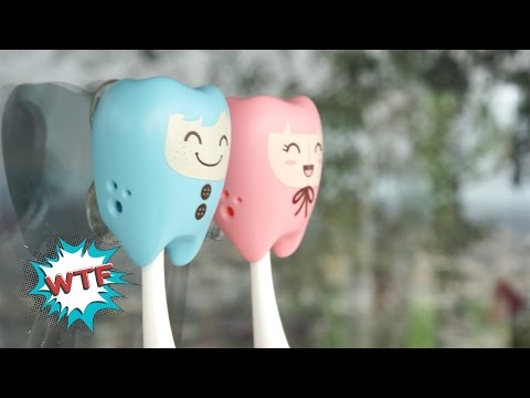 Couple Toothbrush Holders