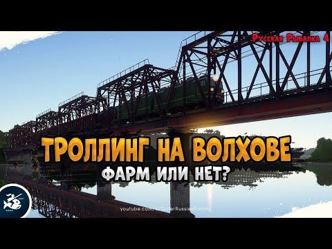 Троллинг на реке Волхов