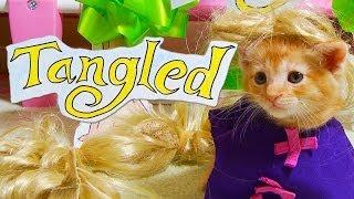 Disneys Tangled (Cute Kitten Version)