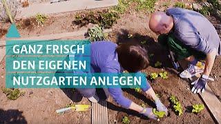 Nutzgarten und Selbstversorgergarten anlegen