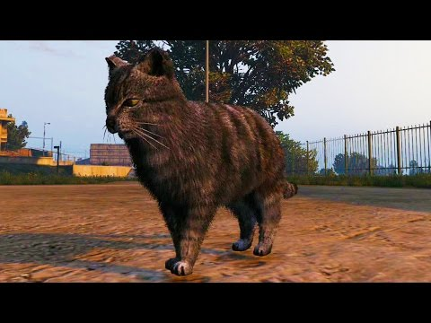 Play As Different Animals In GTA 5s New Hallucinations