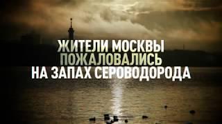 «Дышать становится тяжело»: москвичи пожаловались на неприятный запах в городе