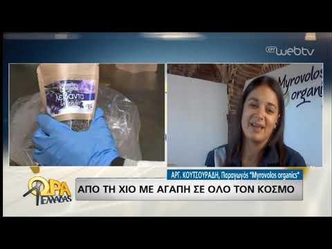 Πρωτοποριακές ιδέες με χιώτικη υπογραφή | 25/06/2019 | ΕΡΤ