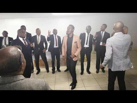 Yawa lembewu - Light Appeal