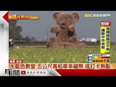 東森新聞 - 看花海免飛北海道 太保七彩花海
