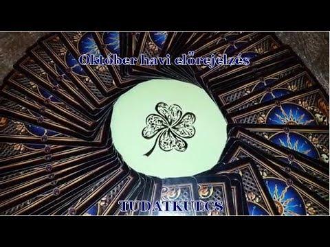 Az enterobiosis életciklusa röviden