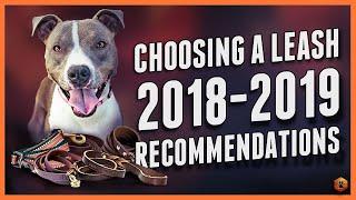 Choosing A Dog Leash: Best Leashes Of 2018-2019