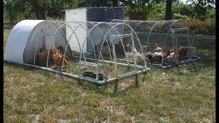 Chicken Tractor Good Design Practices, Tips & Tricks For Building, Ideas