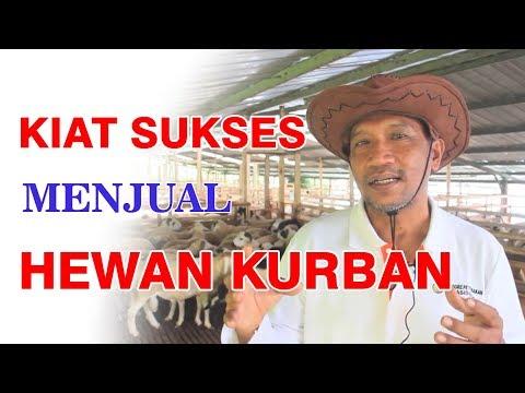 KIAT SUKSES MENJUAL HEWAN QURBAN