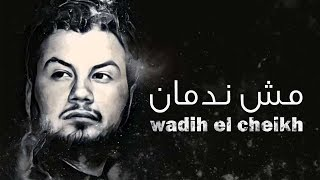 Wadih El Cheikh - Mech Nedman   وديع الشيخ - مش ندمان تحميل MP3