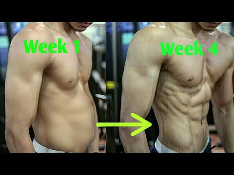 De longs muscles du biceps