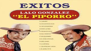 EL PIPORRO SUS MEJORES CANCIONES /GRANDES EXITOS DE COLECCION