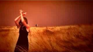 Amon Tobin - Bloodstone (Unofficial)