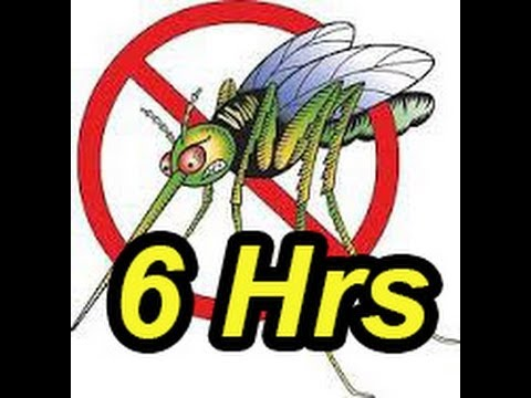 Anti mosquito Sound 6 hrs Mosquito Repellent