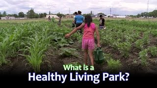 What is a Healthy Living Park?