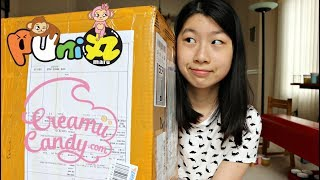 HUGE Squishy Package! + Giveaway w/ CreamiiCandy & Puni Maru