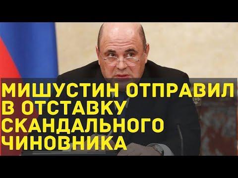 Мишустин отправил в отставку скандального чиновника