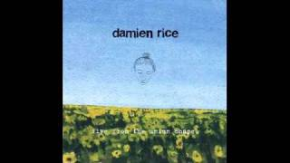 Damien Rice - Baby Sister- Live from the Union Chapel