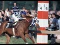 THE TRIPLE CROWN - Documentary - YouTube