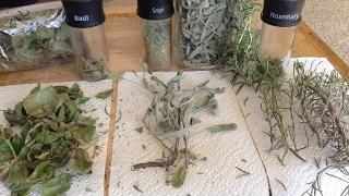 How To Dry & Store Herbs For Maximum Flavor