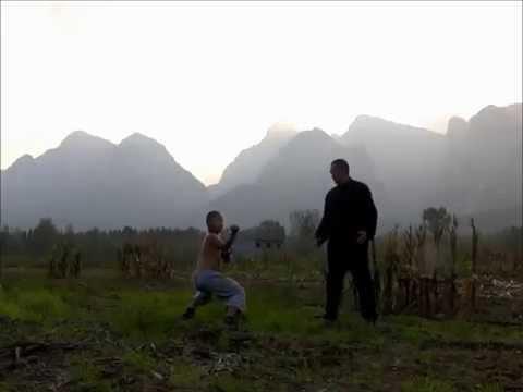 Shaolin Plum flower fist (Meihua Quan) 少林梅花拳
