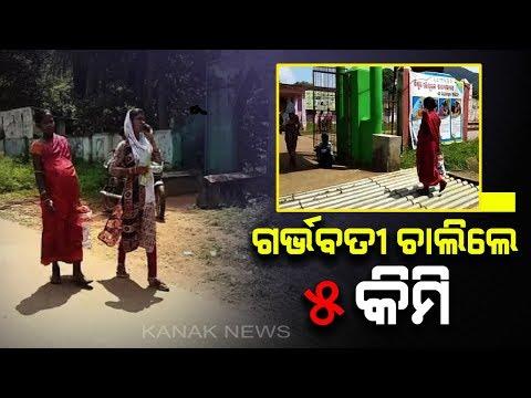 Pregnant Woman Walks Through A Long Way To Reach Hosp In Chitrakonda