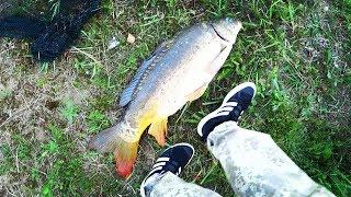 Рыбалка на монстра - 15 кг. Я в ШОКЕ.