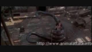 Movie Stills From Anaconda (1997)