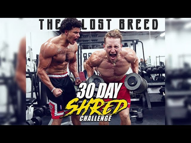 30 Day Shred Challenge Day 1  Get Shredded Now!