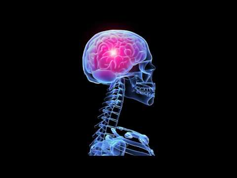 Узи-признаки аденомы предстательной железы