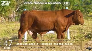 Coro 2331 b4 fiv