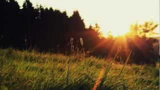 Avicii - All You Need Is Love (Ezon Bootleg)