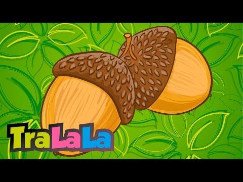 Cartofi pentru verucile genitale