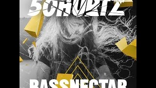 Bassnectar - Pennywise Tribute (Live @ 50HURTZ 01-08-2014)