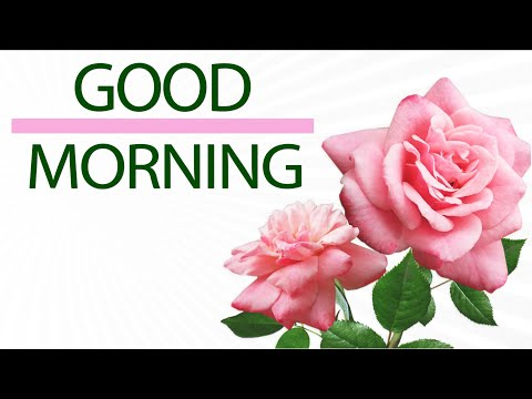 🌺Good morning🌺With love🌺Whatsapp, Wishes, Quotes, Message, Greetings