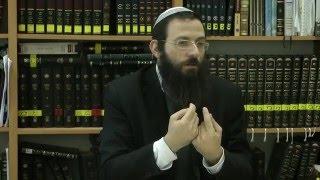 56 הלכות שבת או''ח סימן שיא סע' ו-ט הרב אריאל אלקובי שליט''א