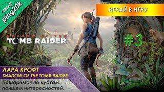 Shadow of the Tomb Raider. Пошаримся по кустам, поищем интересностей. Стрим 3.
