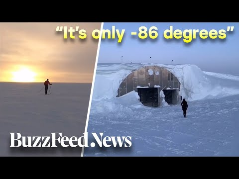 Life In Antarctica: The Most Isolated Part Of The World