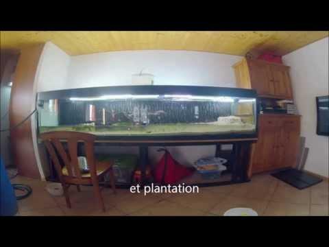 comment nettoyer plante d 39 aquarium la r ponse est sur. Black Bedroom Furniture Sets. Home Design Ideas