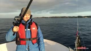 Зимняя рыбалка в Бергене 2016. nordvei.com