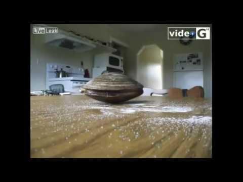 La pesca da mangiatore video su YouTube