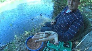 Рыбная ловля на хопре и в балашове