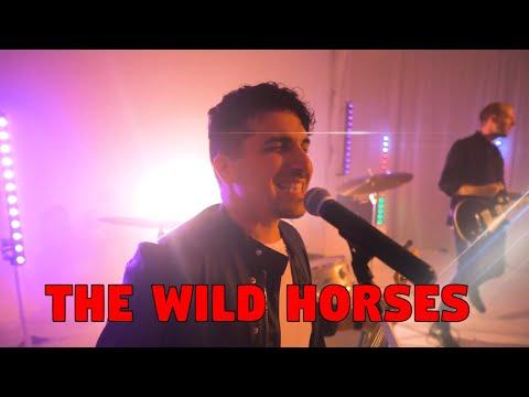 Stallions Video