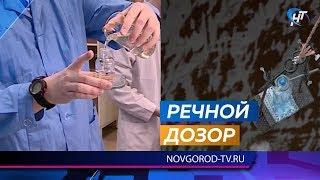 Студенты дважды в неделю берут пробы воды в Волхове и проверяют ее безопасность