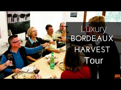 Luxury Bordeaux Harvest Tour with French Wine Explorers