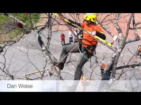 Dan Weise from Weise Choice Tree Services at the New England Tree Climbing Competition work climb event in Brunswick, Maine in 2011.Dan Weise won this competition, earning him a spot at the International Tree Climbing Championship held later that year in Australia.