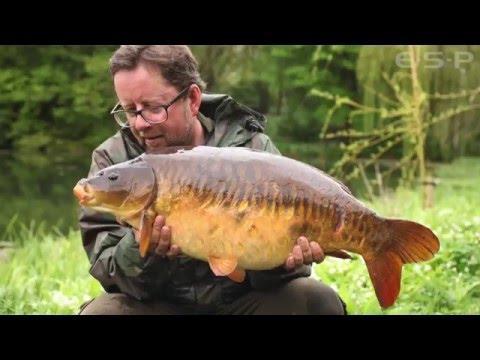 Martin Bowler om karpefiskeri i grødefyldt vand