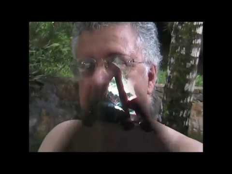 , title : 'Psiche - Paolo Conte (con immagini da Camamù, Bahia, Brasile)'